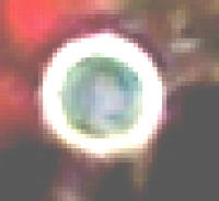 Mystery Ghost amongst thousands of orbs LIVE Capture on CCTV