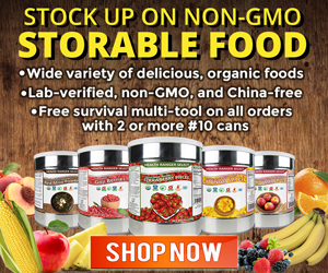 Survival Foods NONE GMO Healthy Must Have Best Products